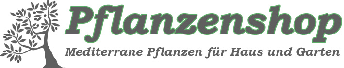 Pflanzenshop by PBS4all